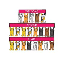 Welcome to our team, cartoon cats. Photographic Print