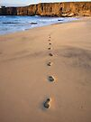 Footprints In The Sand by Madeleine Forsberg