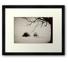 the middle of winter Framed Print
