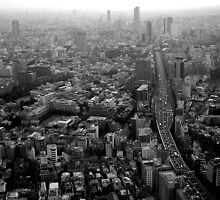Tokyo cityscape by RosLol