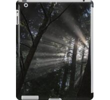 Shining Through iPad Case/Skin