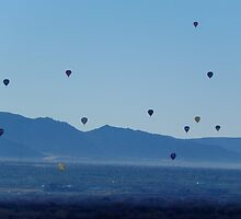 A Balloon Event by © Loree McComb