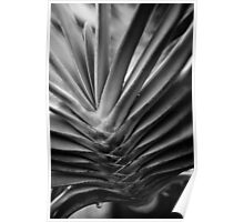 Botanical Abstracts 2 Poster