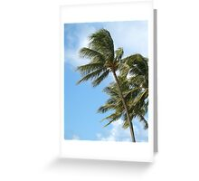 Oahu Palms Greeting Card