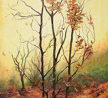 Foggy Autumn Morning by Sorin Apostolescu