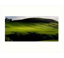 Green green grass of home Art Print