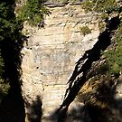 Elephant Rock at Ausable Chasm by ValeriesGallery