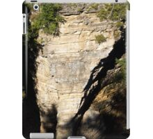 Elephant Rock at Ausable Chasm iPad Case/Skin