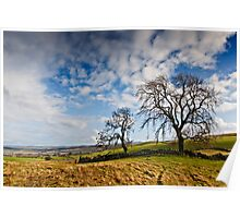 Two Trees - Humbleton, Northumbria National Park. Poster