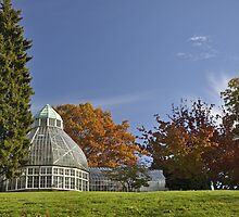 Tacoma, Wright Park Arboretum by DiamondCactus