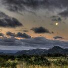 What a Little Moonlight Can Do - HDR by Margo Naude