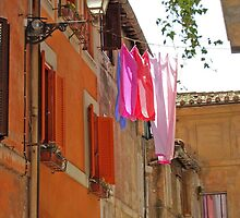 Catching Light and Shadow-Rome, Italy by Deborah Downes