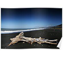 Driftwood Poster