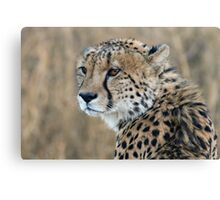 Regal Beauty Canvas Print
