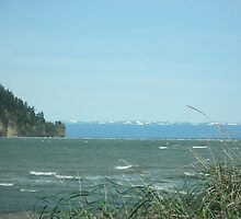 La Push Beach by Nina M