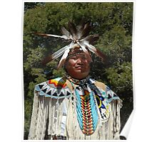 Navajo Chief Poster