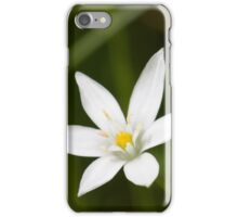 Star Of Bethlehem iPhone Case/Skin