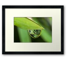 Water Droplet Framed Print