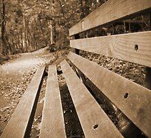 Waiting... by Tamara Dandy