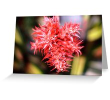 Red Plant Greeting Card