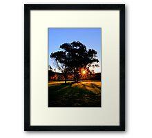 Sunset Shadows Framed Print