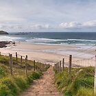Down To Sennen Cove by Neal Petts