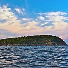 Sheep Porcupine Island by main1