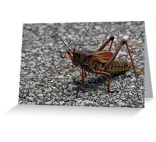 Lubber directing traffic Greeting Card
