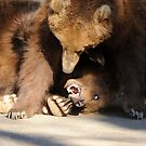 Grizzly Bears Wrestling by Joe Jennelle