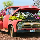 The Retired Pickup's Second Career by Martha Sherman