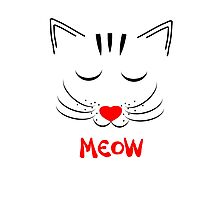 Cute Pussy Cat Face Drawing Meow Photographic Print