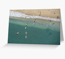 Pelicans over the Coast Greeting Card