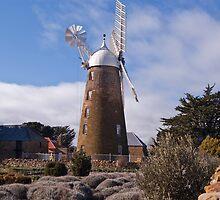 Carrington Mill - Oatlands by Sonya Byrne