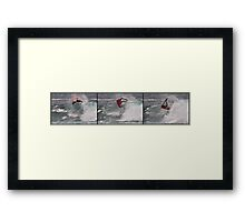 ARS Sequence Framed Print