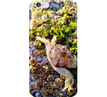 The oceans creatures iPhone Case/Skin
