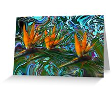 Trio in Paradise Greeting Card