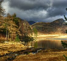 The January Tarn by Jamie  Green