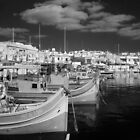 Marsaxlokk Boats in IR by David W. Harris