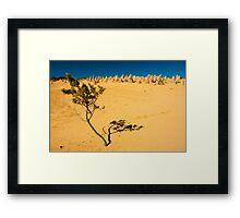 Pinnacle Desert Framed Print