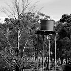 Tall Tankstand by Lozzar Landscape