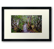 Overland Track, Tasmania, Australia Framed Print