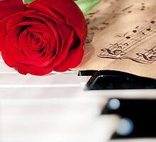 rose and music by reich
