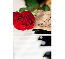 rose and music Photographic Print