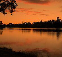 Sunlit Reflections by Lozzar Landscape