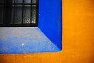 Window by Paul McSherry