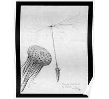 Dandelion head and seed (macro pencil sketch 1959) Poster