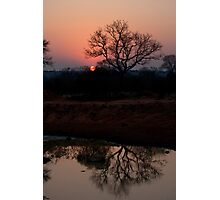 Lion Sands Sunset Photographic Print