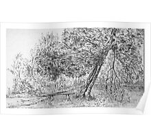 """A quiet corner"", Sutton Park (pencil sketch 1958) Poster"