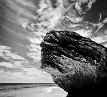 Earth, Sea and Sky in Black and White by Ken Summers