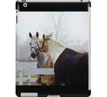 A Touch iPad Case/Skin